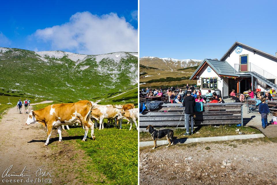 Wanderweg und Damböckhaus auf dem Schneeberg