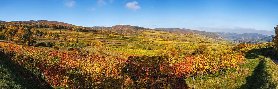 Herbstlandschaft in der Wachau
