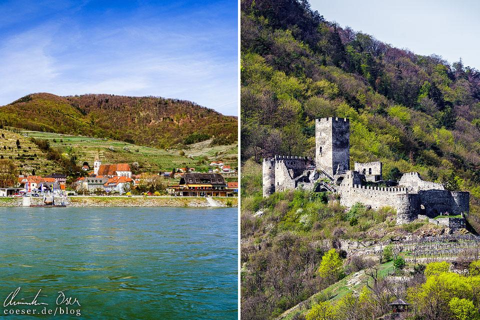 Blick auf Spitz an der Donau und die Ruine Hinterhaus in der Wachau