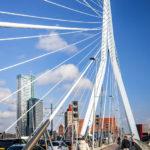Spaziergang über die Erasmusbrug von Rotterdam