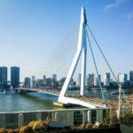 Blick von der Terrasse des nhow Hotels auf die Erasmusbrug von Rotterdam