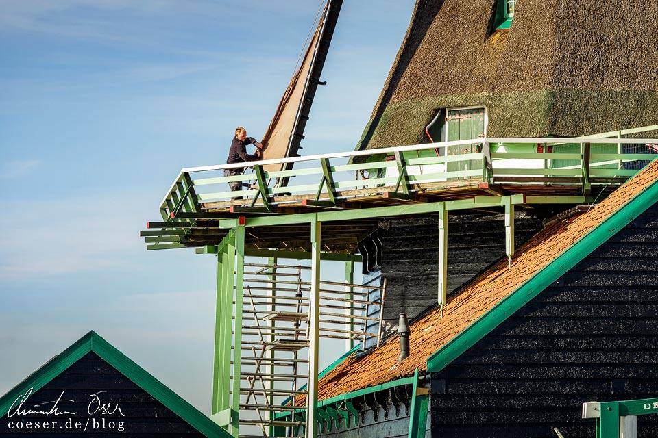 Windmühlen in Zaanse Schans
