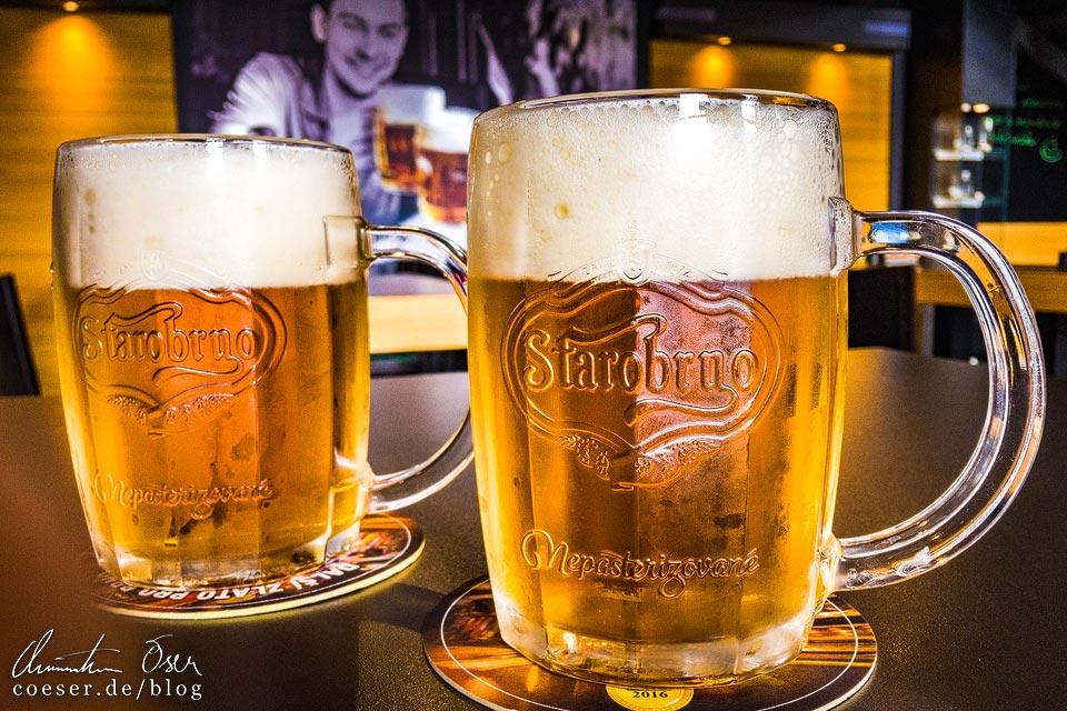 Zwei Bier in der Brauerei Starobrno in Brünn