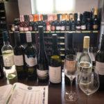 Weinverkostung im Haus der alten Rebe
