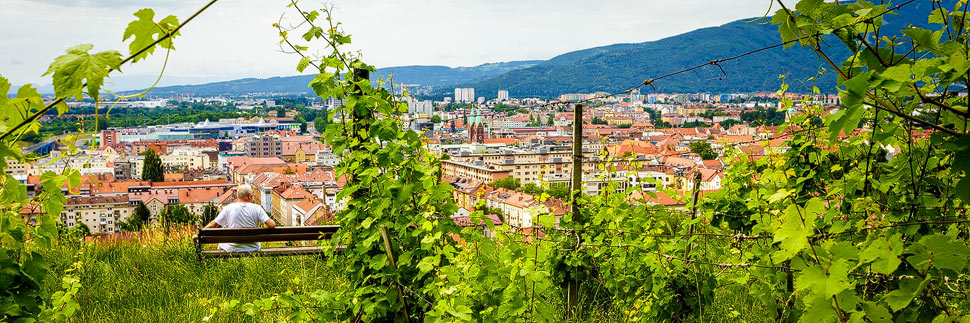 Blick vom Hausberg Piramida auf Maribor