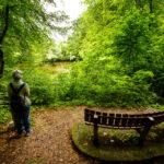 Der dritte der Drei Teiche im Stadtpark von Maribor