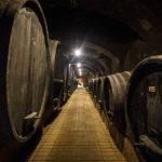 Holzfässer im Weinkeller Vinagova vinska klet in Maribor