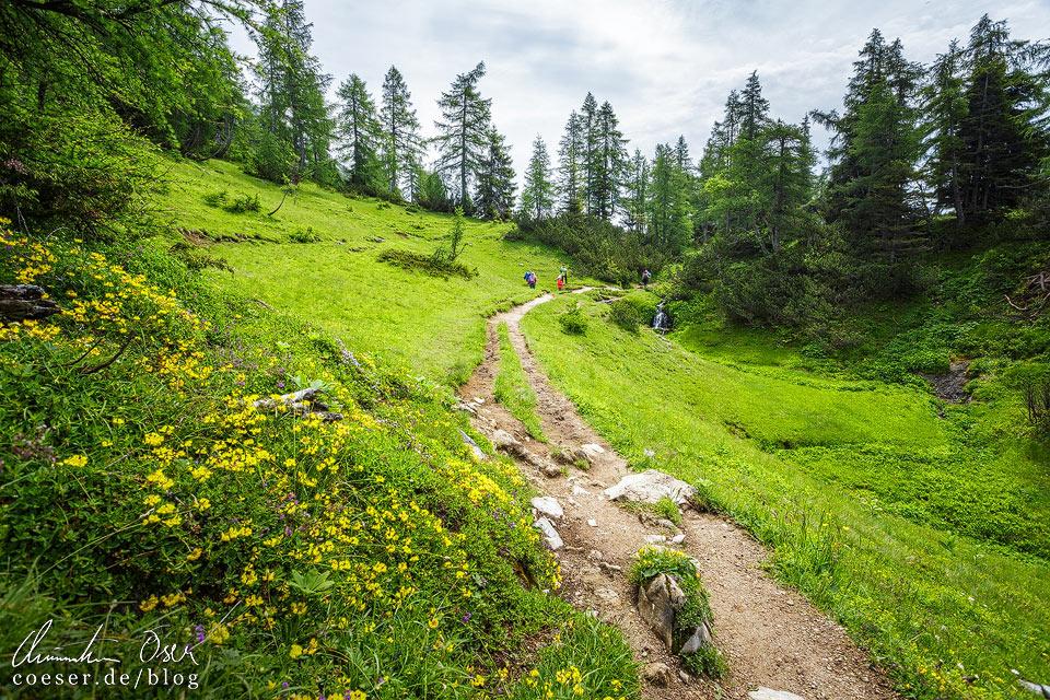 6-Seen-Wanderweg auf der Tauplitzalm