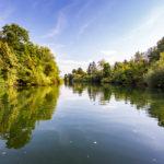 Unberührte Natur während einer Bootsfahrt auf der Ljubljanica in Ljubljana