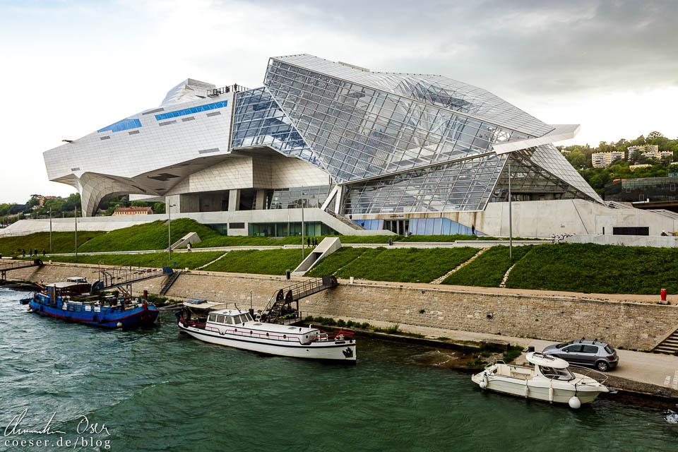 Musée des Confluences in Lyon