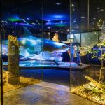 Innenansicht des Schlossmuseums in Linz