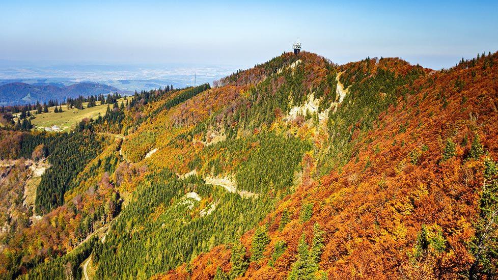 Blick auf den Muckenkogel in Herbstfarben