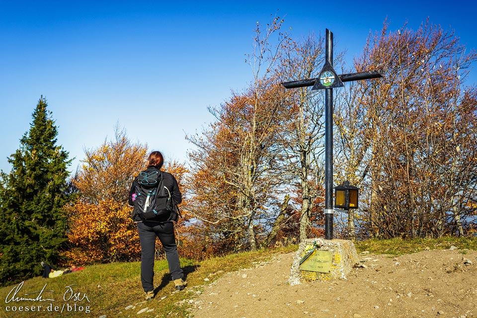 Gipfelkreuz auf der Hinteralm auf dem Muckenkogel (Lilienfeld)