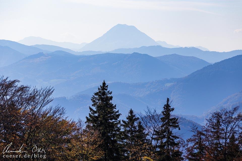 Blick auf den Ötscher vom Muckenkogel (Lilienfeld)