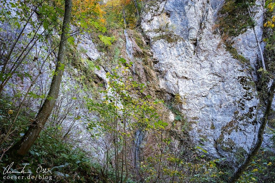 Der Große Wasserfall auf dem Wasserfallsteig auf dem Muckenkogel (Lilienfeld)