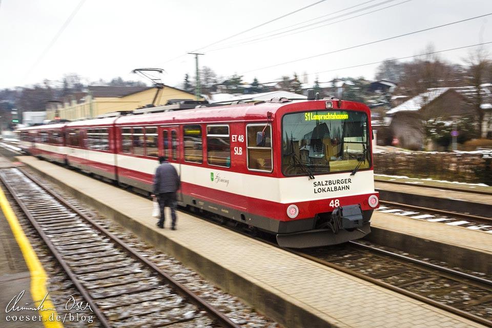 S1 der Salzburger Lokalbahn im Bahnhof Oberndorf bei Salzburg