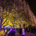 Der Weihnachtsmarkt vor dem Kunstpavillon im Ledeni Park von Zagreb