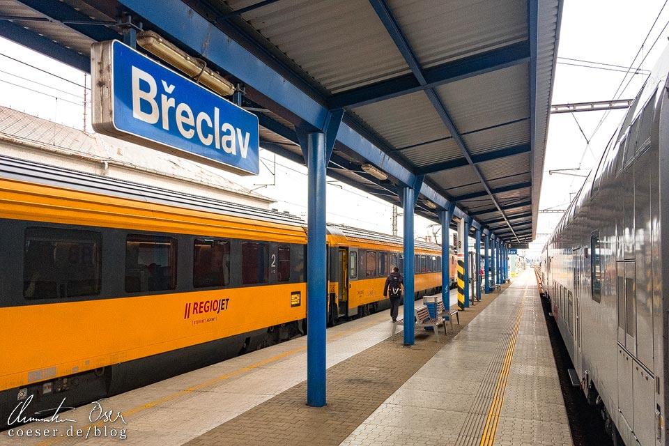 Ein Zug von RegioJet im Bahnhof Břeclav (Lundenburg)