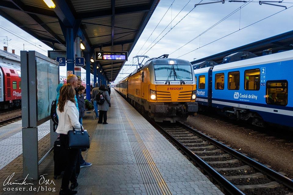 RegioJet im Bahnhof Břeclav (Lundenburg)