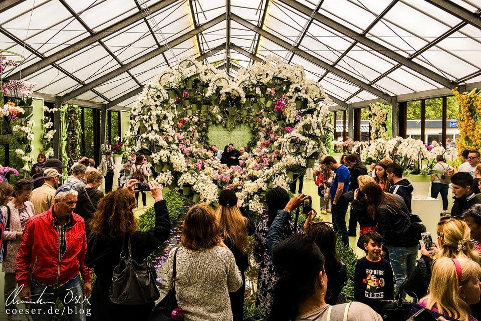 Pavillons mit Blumenkunstwerken in Keukenhof