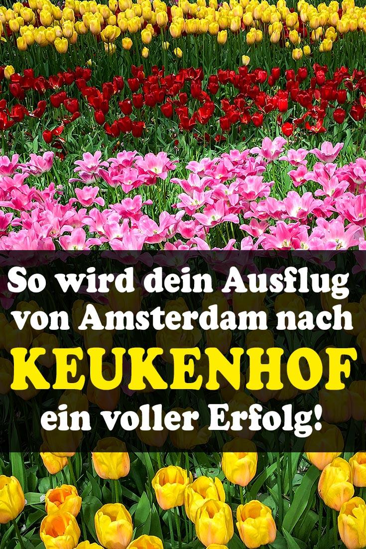 Keukenhof: Erfahrungsbericht zum Blumenpark vor Amsterdam mit Tipps zur Anreise, den besten Fotospots sowie kulinarischen Tipps