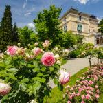 Außenansicht der Villa Patumbah und des Rosengartens in Zürich