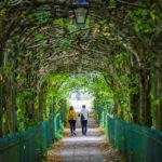 Der Birdcage Walk in Bristol