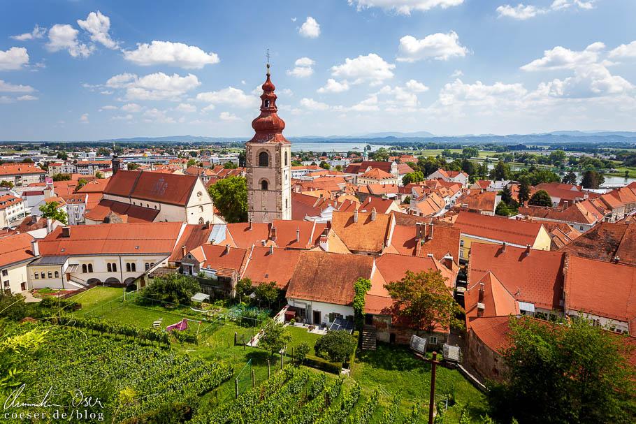 Ausblick vom Schloss auf die roten Dächer von Ptuj und den Stadtturm
