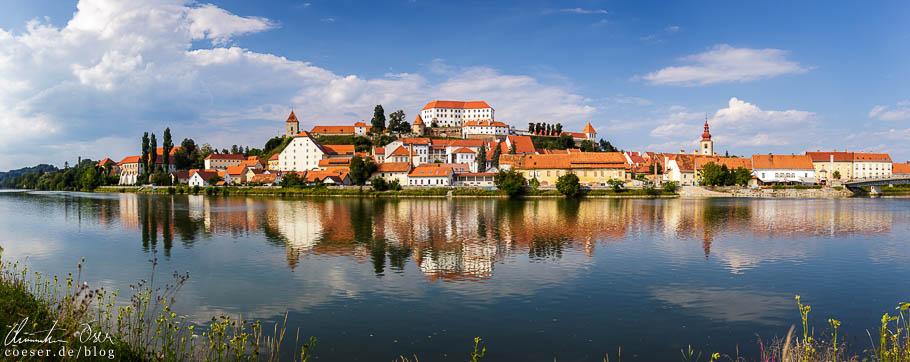 Stadtpanorama von Ptuj und Spiegelung in der Drau