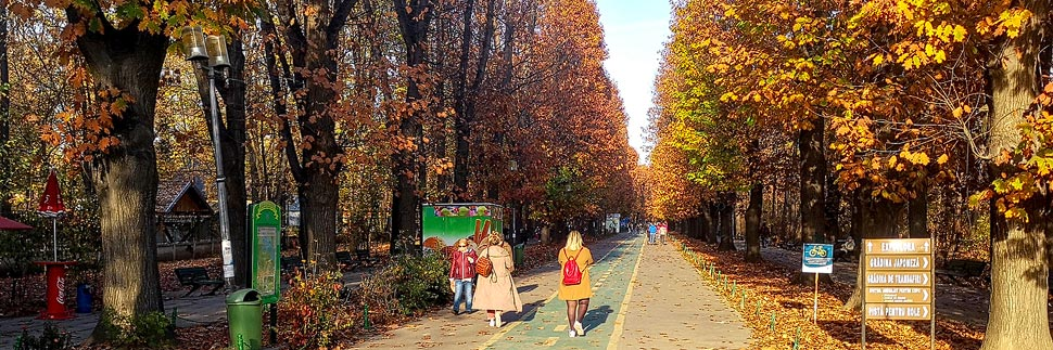 Spaziergänger im Herăstrău-Park in Bukarest
