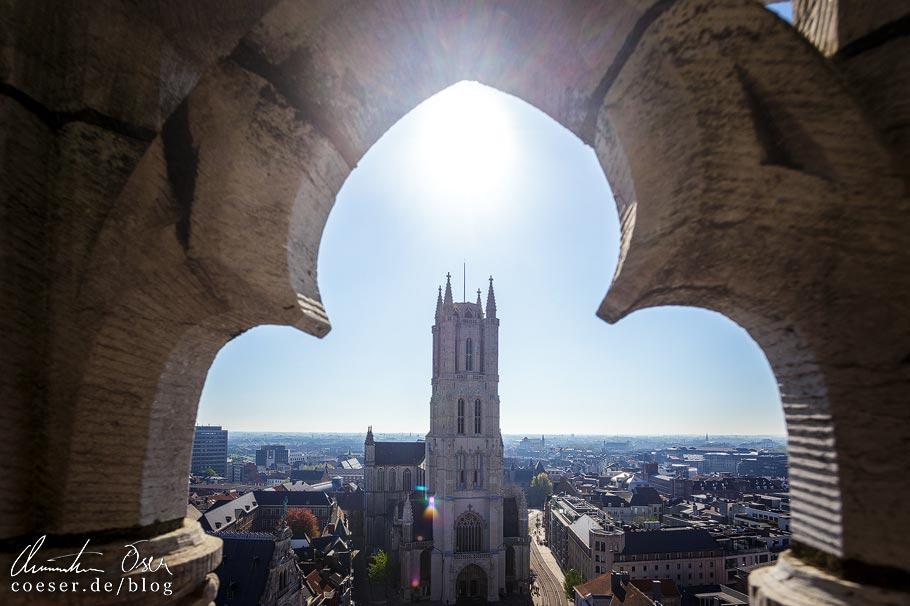 Blick vom Glockenturm Belfried auf die St.-Bavo-Kathedrale in Gent