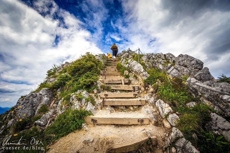 Wanderer auf dem Gipfel des Jenner