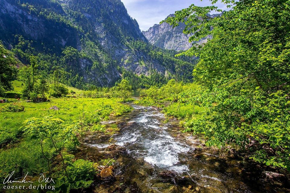 Kleiner Fluss am Salet Obersee beim Königssee