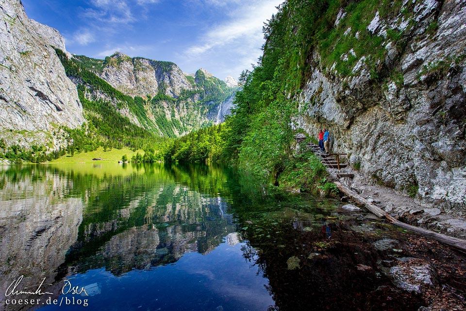Spiegelung des Obersees am Königssee