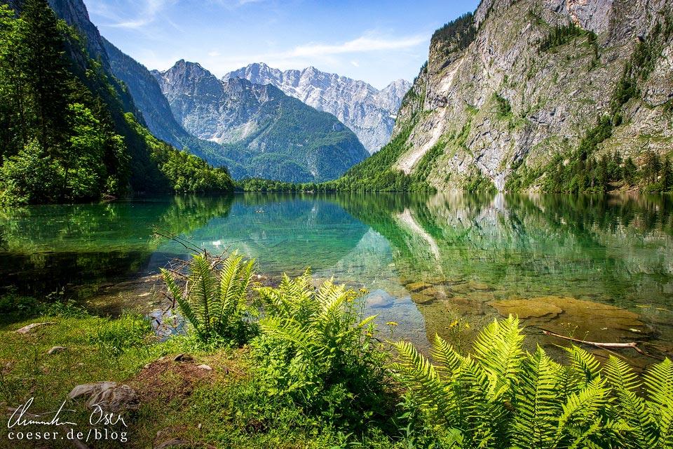 Ostufer des Obersees am Königssee