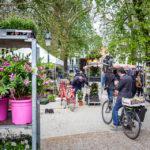 Blumenmarkt auf dem Burgplatz von Brügge