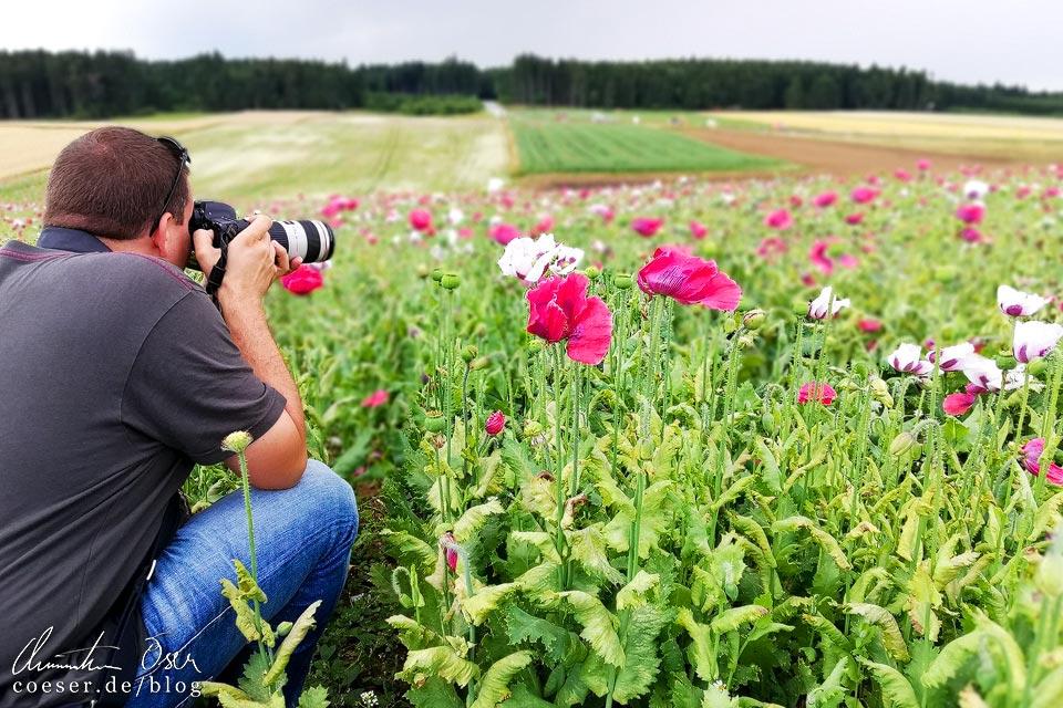 Reiseblogger Christian Öser fotografiert ein Mohnblumenfeld im Mohndorf Armschlag