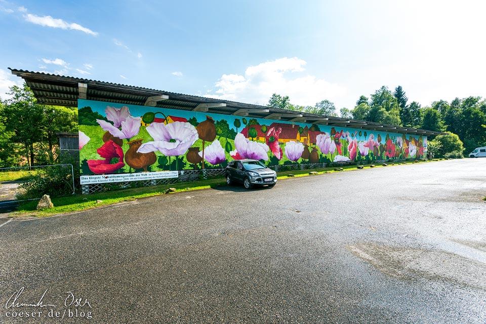 Mohnbild des Waldviertler Künstlers Karl Moser auf dem Parkplatz im Mohndorf Armschlag