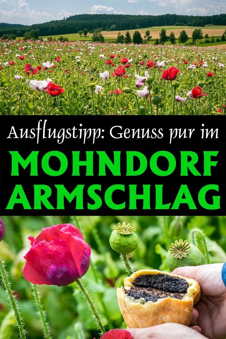 Mohndorf Armschlag: Erfahrungsbericht mit Tipps zu den besten Fotospots für die Zeit der Mohnblüte im Waldviertel und einer Restaurantempfehlung