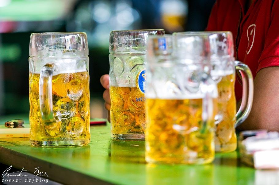 Hofbräu im Biergarten am Chinesischen Turm im Englischen Garten in München