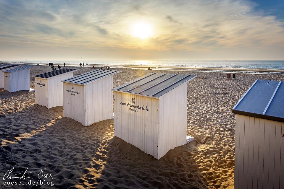 Strandhäuschen an der Nordseeküste in Oostende in Belgien