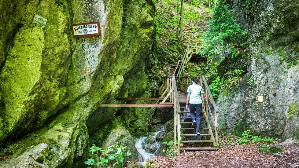 Eingang zur Steinwandklamm in Niederösterreich