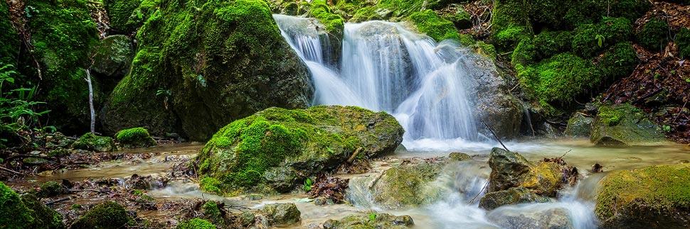 Fließender Bach in der Steinwandklamm in Niederösterreich