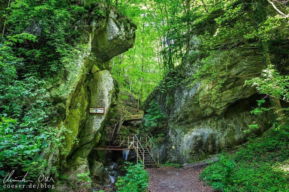 Zugang zur Steinwandklamm in Niederösterreich