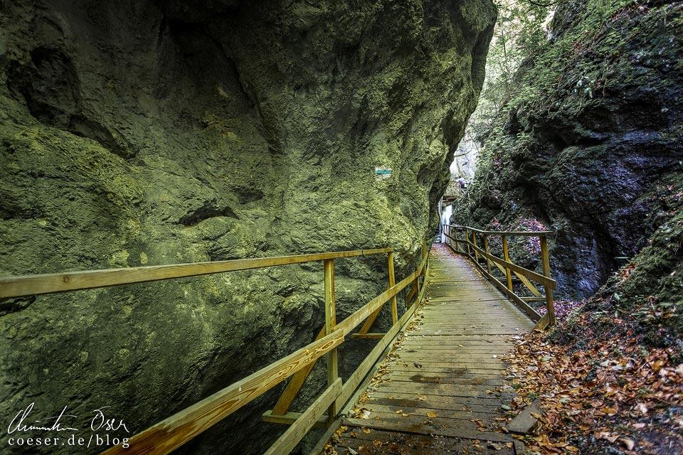 Holzstege und Felswände in der Steinwandklamm in Niederösterreich