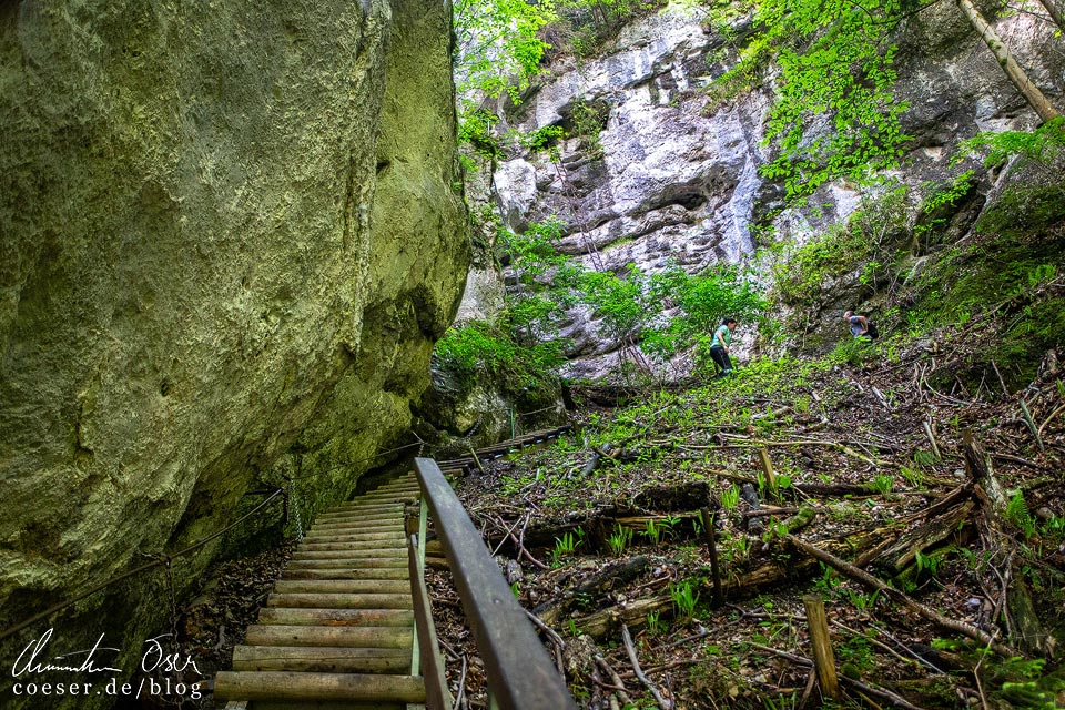 Wanderweg am Rudolf-Decker-Steig in der Steinwandklamm in Niederösterreich