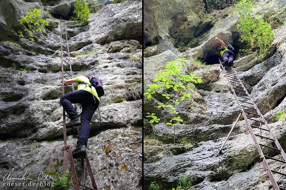 15-Meter-Leiter am Rudolf-Decker-Steig in der Steinwandklamm in Niederösterreich