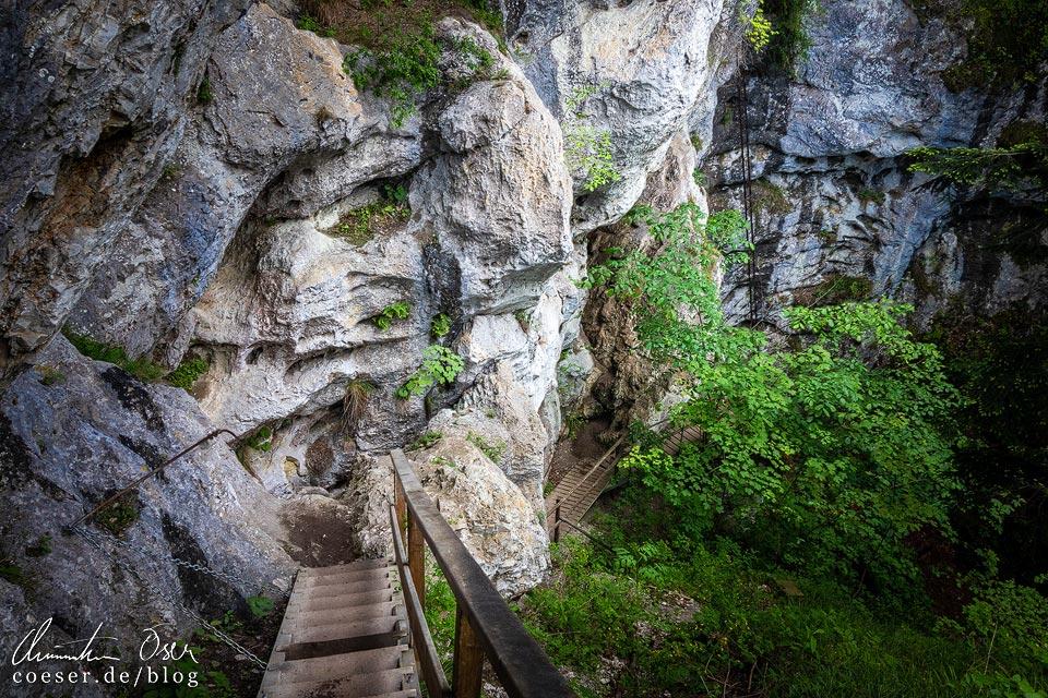 Rudolf-Decker-Steig in der Steinwandklamm in Niederösterreich