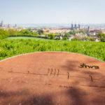 Blick auf Bamberg vom Aussichtspunkt am Altenburger Berg