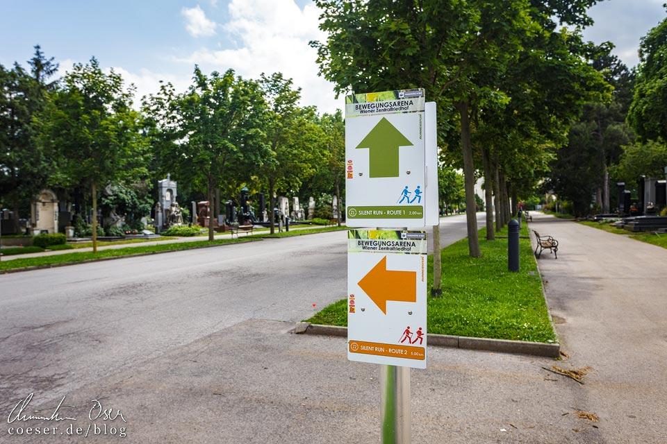 Laufstrecken auf dem Wiener Zentralfriedhof